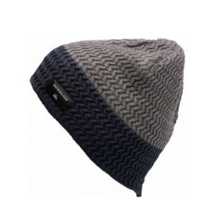 Шапка Quiksilver Cushy Color Beanie (iron gate/navy blazer)