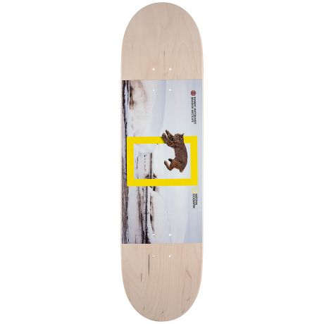 Element Deck Nat Geo Westgate Cat (assorted)